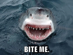 Bite me.